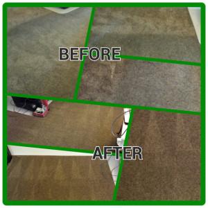 carpet1-300x300